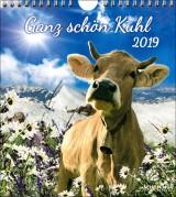 Kalender Allgäu Kühe-Kalender 2019